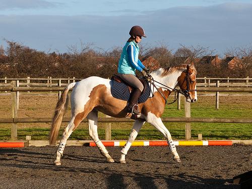 Jak jezdit na koni
