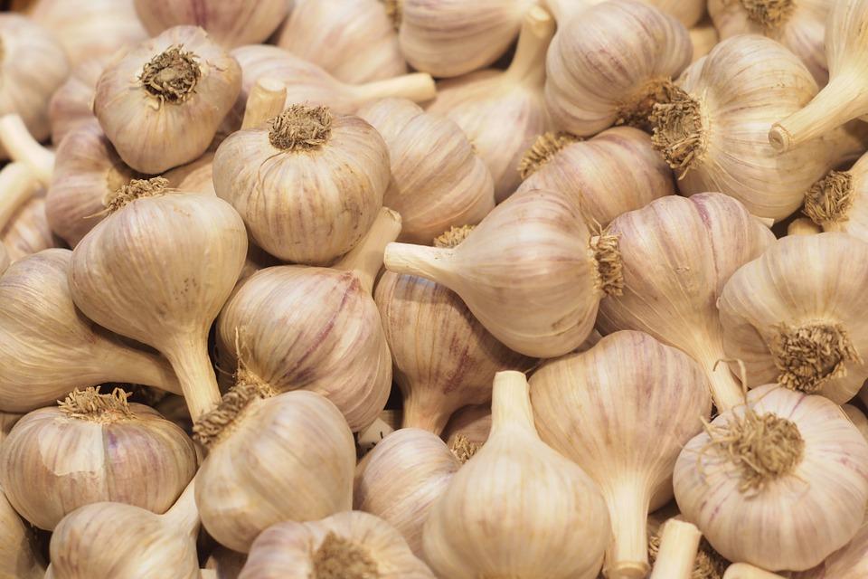 Jak zpracovat česnek?