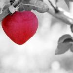 Co je láska