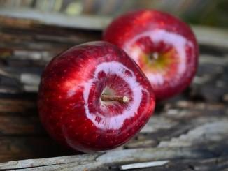 Jak sušit jablka v sušičce?