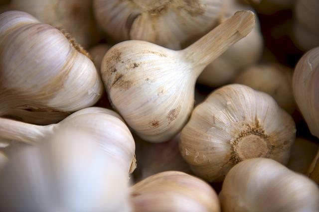 Česnečka - recept