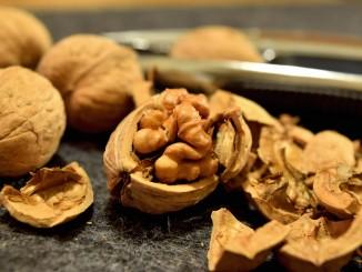 Jaké tajemství skrývají vlašské ořechy?