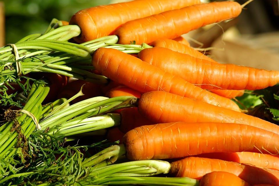 Jaké účinky má mrkev?