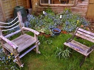 Jaké dřevo se hodí na zahradní nábytek?