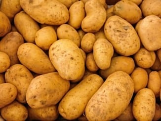Jak správně zpracovat brambory?