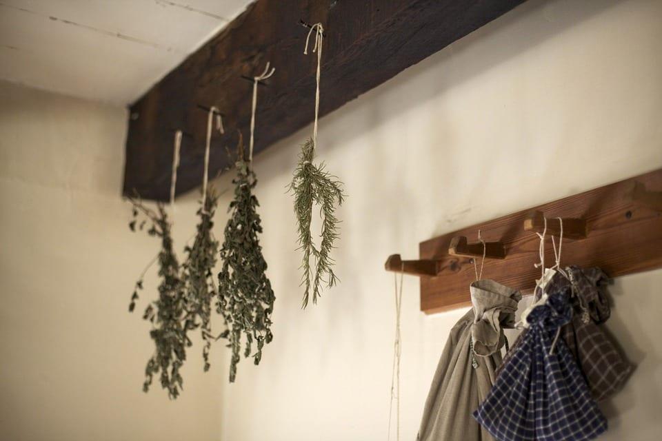 Jak správně sušit a skladovat bylinky?