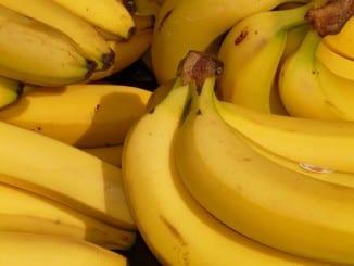 Jaké vlastnosti má banán?
