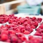 Jak udržet v létě studené jídlo