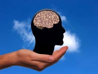 Co dělá mozek během spánku?