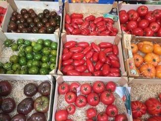 Jaké účinky má rajčatová šťáva?