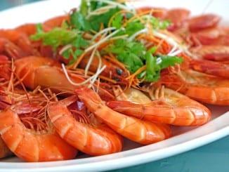 Jak prospívají mořské plody?