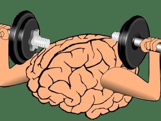 Jak správně pečovat o mozek?