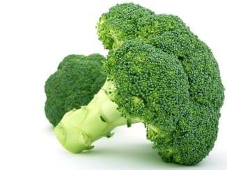 Jak prospívá brokolice?