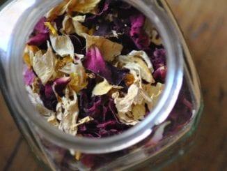 Jaké jedlé květy lze použít při vaření?