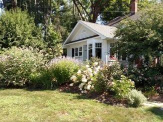 Jak pečovat o rostliny na zahradě?