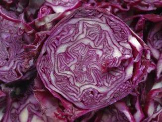 Jak udělat salát z červeného zelí?