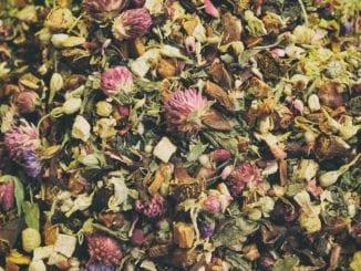 Jaké bylinné směsi pomáhají při nachlazení?