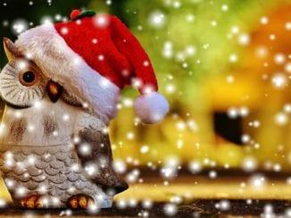 Jak nepřibrat přes vánoce?