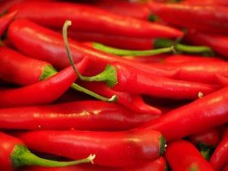 Proč jíst chilli papričky?