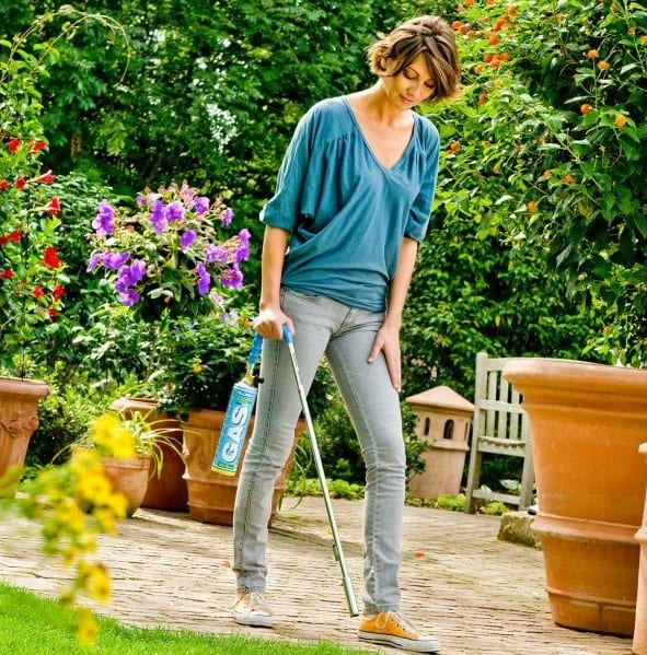 Plevele na chodníku se lze zbavit bez námahy i bez chemie