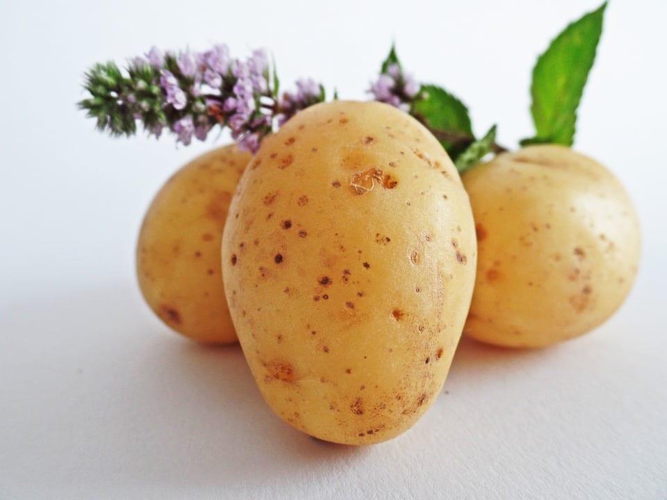 Jak udělat teplý zeleninový salát s bramborami?