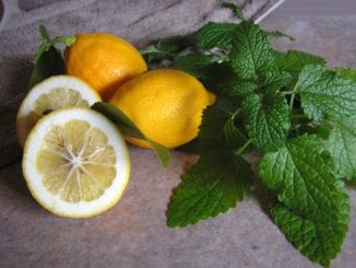 Jak vyrobit citronový balzám na rty?