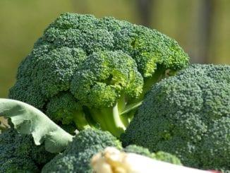 TOP 4 potraviny pro zdravé zažívání