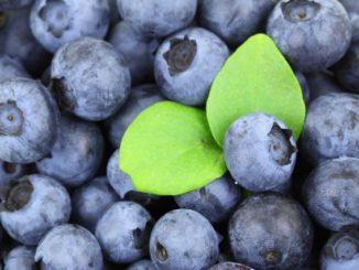 Superpotraviny, to nejsou jen chia a plody goji. Je to ovoce i zelenina
