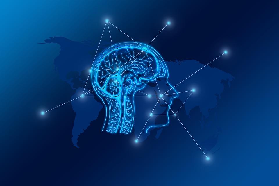 Podpořte svůj mozek pomocí změny jídelníčku