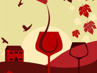 Umíte si vybrat správně víno a destiláty do kombinace s jídlem?