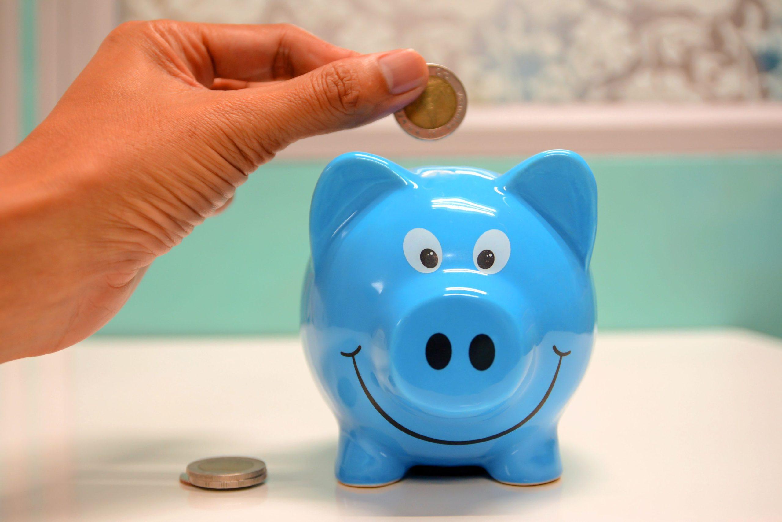 9 tipů na moudrý rozpočet