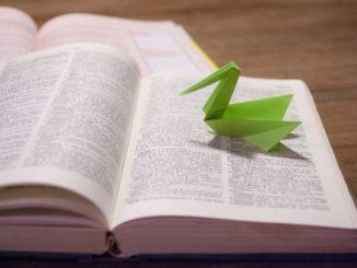 Roční kurz češtiny pro cizince: naučte se jazyk a studujte na univerzitě v Česku
